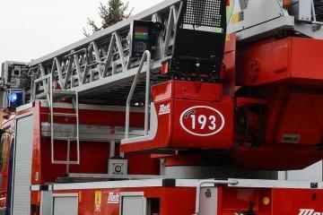Požar u Zagrebu: Gorjela su dva auta, bor, garažna vrata...