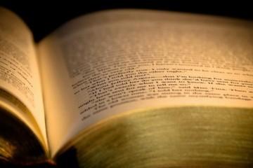 U povodu Godine čitanja: Slobodno čitajte, to nije sramota!