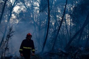 Svi požari na Čiovu pod kontrolom, uhićena jedna osoba