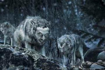 Vladimir Trkmić: Čovjek je čovjeku vuk