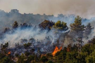 Kovačević: Vatra u blizini naselja i ceste je pod kontrolom, neće biti problema