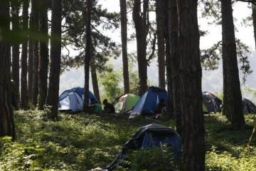 SLOVENCI BRANE SVOJE: Pohvatali nikad veći broj ilegalnih migranata i vratili ih u Hrvatsku!