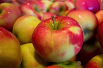 NE NASJEDAJTE! Pročitajte dva puta: Znate li kakve vam jabuke podvaljuju?