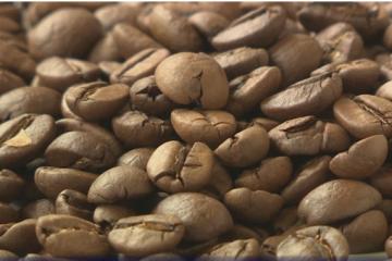 Apel Vladi za ukidanjem posebnog poreza na kavu