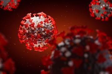 """Revolucionarno otkriće: Pronađeno """"potpuno ljudsko"""" antitijelo koje sprječava ulazak koronavirusa u tijelo čovjeka"""