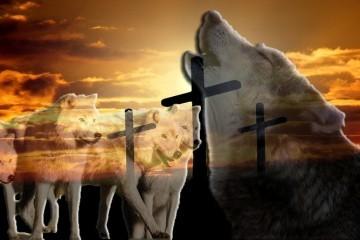 """Katolici su konstantno okruženi """" vučjim čoporom"""""""