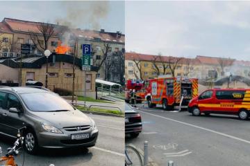 POŽAR NA KVATRIĆU Velik broj vatrogasaca je na terenu