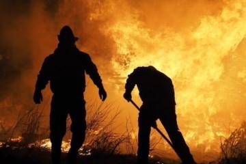 Diljem Rusije gori više od pola milijuna hektara šuma, požare gase tisuće vatrogasaca