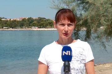 Vučemilović: Pozivam Mlinarića, Dretara i Prkačina da javno kažu jesu li zaista osudili Škoru na sjednici