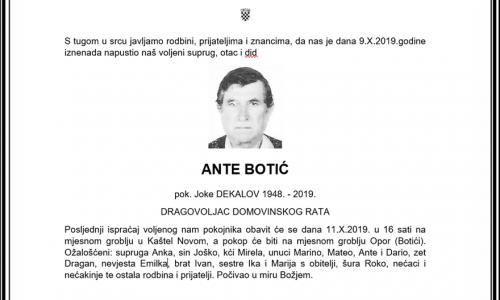 Posljednji pozdrav ratniku - Ante Botić