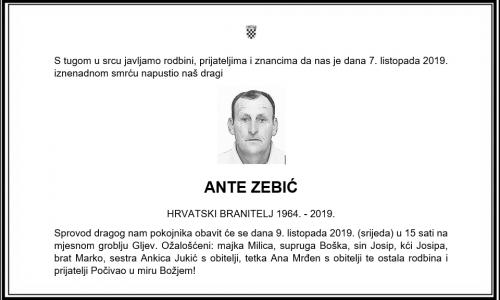Posljednji pozdrav ratniku - Ante Zebić