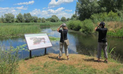 UNESCO je 15. rujna proglasio riječni krajolik Mure, Drave i Dunava prvim 5-državnim rezervatom biosfere na svijetu. Što zapravo znači taj povijesni događaj