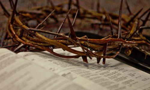 Zanimljivo - korištenje korizmenog vela u liturgiji