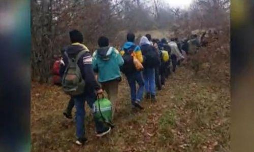 RASTE BROJ: Objavljena brojka migranata koji su ostali u Hrvatskoj