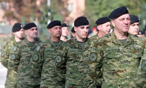 9. gardijska brigada – Vukovi