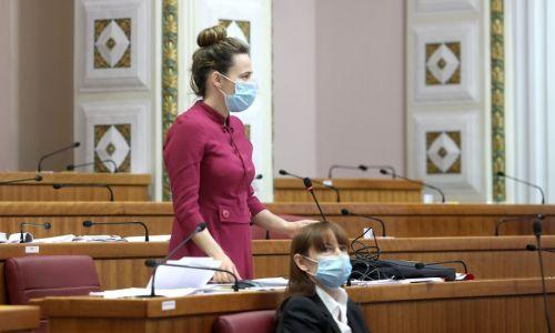 Selak Raspudić o Jandrokoviću u kupaćim gaćama: Može li niže?